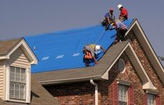 Essential things to look for when choosing a roofing company