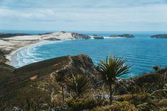 LONE DRIFTERS   Onze beste Nieuw-Zeeland tips voor je rondreis Stavanger, Auckland, Lonely, Outdoor, Rice, Outdoors, Outdoor Games, The Great Outdoors, Loneliness