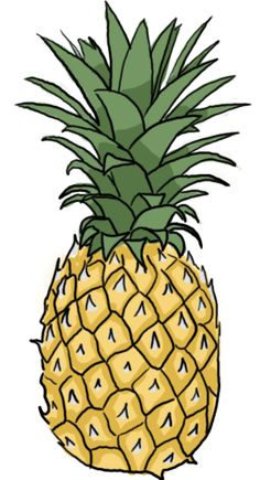how to draw a pineapple - Google Search