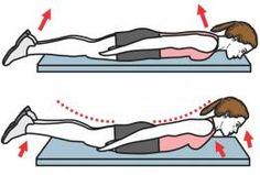 exercice bas du dos