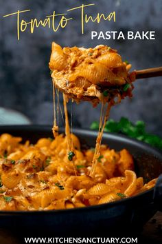An easy pasta bake with tuna and creamy tomato sauce, all topped off with lots of lovely cheddar cheese. A great weeknight dinner! Tuna Tomato Pasta, Creamy Tuna Pasta Bake, Tomato Sauce, Tuna Bake, Best Pasta Recipes, Seafood Recipes, Easy Dinner Recipes, Cooking Recipes, Healthy Recipes