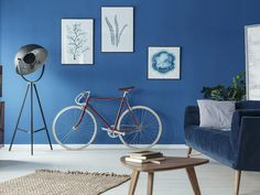 After much speculation and anticipation, colour communications expert Pantone has announced its Colour of the Year for 2020 – Classic Blue. House Color Schemes, House Colors, Trending Paint Colors, Pantone 2020, Interiors Online, Kitchen Trends, Color Of The Year, Pantone Color, Pantone Blue