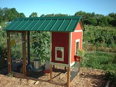 4' x 8' House Building Plans (4-5 chickens) from My Pet Chicken