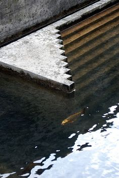 Carlo Scarpa, Fish pond. Cemetery. Near Treviso, Italy. (Tomba Brion). 1969- 1978