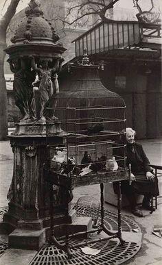 Le marché aux oiseaux, Paris, 1950 © Rosalie Gwathmey - Vía @universalbread