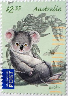 Koala Postage Stamp from Australia. Is it me or does this koala look a little sinister? Art Postal, Postage Stamp Art, Australian Animals, Love Stamps, Fauna, Mail Art, Stamp Collecting, My Stamp, Oeuvre D'art