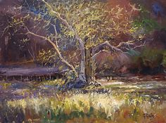 My Favorite Tree by George Gallo Oil ~ 30 x 40