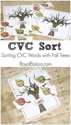 CVC Matching Printab