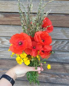 Wild flower bouquet. Summer beauty. Love Flowers, Wild Flowers, Summer Beauty, Poppies, Floral Design, Bouquet, Happiness, Photo And Video, Plants
