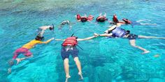 Paket Gathering Kantor di Banyuwangi 2 Hari 1 Malam - A - paket wisata banyuwangi, paket tour banyuwangi Backpacker, Banana Boat, Underwater, Bali, National Parks, Tours, Outdoor Decor, Banana Split, Under The Water