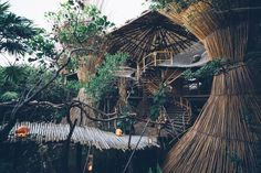 Restaurant Kin Toh, Azulik, Tulum Tulum Restaurants, Paradise Places, Maui Vacation, Tulum Mexico, Tree Tops, New Travel, Adventure Awaits, Ciel, Outdoor Camping