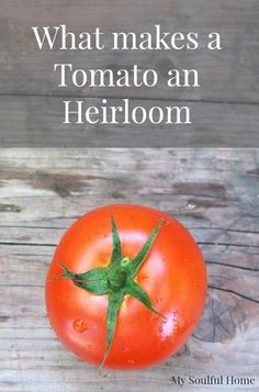 What makes a tomato an heirloom