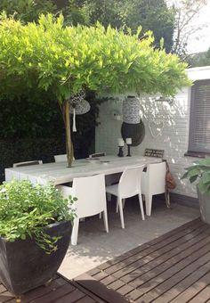 Juste derrière la maison, une terrasse charmante aménagée contre un mur. Grâce à la haie de cyprès comme brise-vue et un mimosa autour duquel la table est construite sur mesure, on obtient un coin repas sur la terrasse où la végétation crée l'intimité. Pour la déco, des suspensions en forme de lampions qui dès la nuit tombée renforcent le charme de cette terrasse en ville bien abritée des regards et du vent.