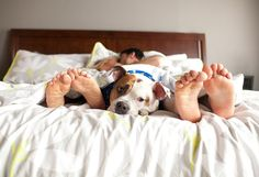 5 Signs You're In a Relationship With Someone Who Doesn't Like Dogs – AngusPost