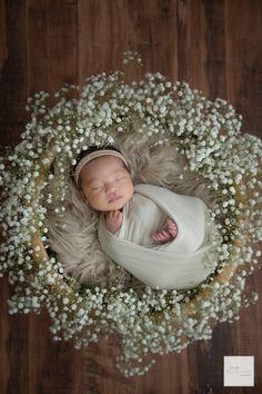 Newborn Posing, Newborn Shoot, Newborn Baby Photography, Newborn Photo Props, Newborn Pictures, Baby Pictures, Home Studio Photography, Newborn Studio, Baby Swaddle
