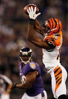 A.J. Green. Seriously like one of the best things that has happened to the Bengals in recent history..