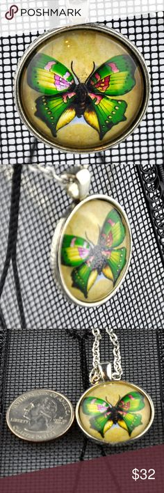 "Green Butterfly Glass Photo Art Necklace A green butterfly set on a neutral background make up this glass dome Necklace  Handmade 1"" round pendant with a green butterfly image sealed behind glass in an antique silver tone tray  Choice of 16"", 18"", 20"" or 24"" Rolo Chain  Hand assembled so small air bubbles may be present  Water resistant but not waterproof  Photo taken next to quarter for size  Smoke free pet friendly home  Internal SKU: GREENBUTTERFLY Handmade Jewelry Necklaces"