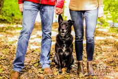 Celebrating National Pet Day in Photos National Pet Day, Engagement Inspiration, Street Photo, Big Day, Spotlight, Engagement Session, Your Pet, Wedding Day, Wedding Photography