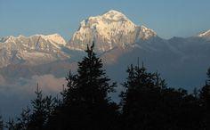 A 4 days trek to Ghorepani - Poon Hill starting from Pokhara.