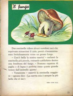 La gemma Short Stories, Leo, Italian Lessons, Education, Studio, Drawings, School, Books, Vintage
