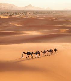 40 Ideas De Desierto Desierto Paisaje De Desierto Paisajes