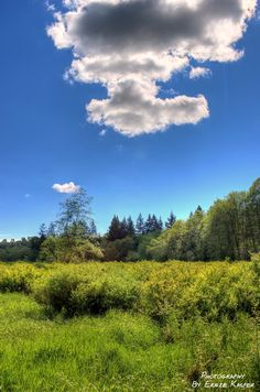Campbell Valley Park, Langley BC