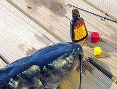 Here's a great catfish bait you can keep secret from your friends that requires no mixing, stirring or gagging. Buy a bottle of anise extract, which smells like licorice, in the spice and extract sect