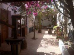 Beautiful patio in Restaurante Casa Princess Arminda XVII, in Betancuria (Fuerteventura, Canary Island).  Garden, backyard.