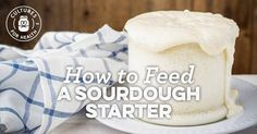 HOW-TO VIDEO: How To Feed A Sourdough Starter
