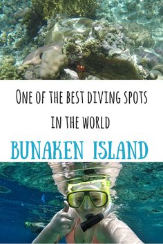 One of the best diving spots in the world – Bunaken Island, Indonesia