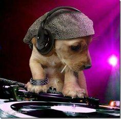 Rock N Roll  lol  :)