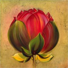 """""""Lotus Bulb"""" from the series """"In the Lotus Land"""" - FOTOBOARD"""