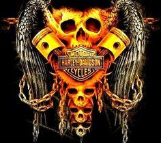 Harley Davidson News – Harley Davidson Bike Pics Harley Davidson Quotes, Harley Davidson Tattoos, Harley Davidson Wallpaper, Classic Harley Davidson, Harley Tattoos, Biker Tattoos, Skull Tattoos, Tatoos, Harley Davidson Sportster