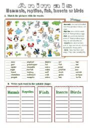 Over The Hedge Worksheet Google Search Ecology Owl