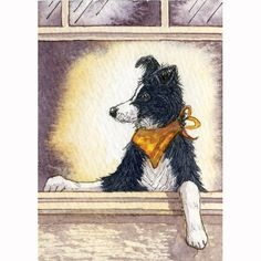 Border collie dog art print  I am Soooo Cool by susanalisonart,
