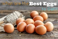 What Are the Best Type of Eggs to Get? - Paleo Recipes, Gluten-free Recipes and Grain-free Recipes
