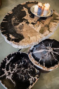 Petrified wood coffee table designs