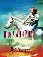 Own it - Disney's Ride A Wild Pony