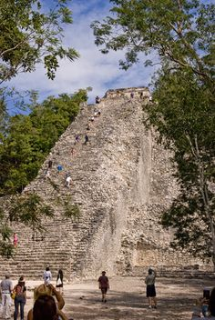 The pyramid at Coba - the village in the jungle that was my inspiration for the story. Adventure, Travel, Inspiration, Biblical Inspiration, Viajes, Destinations, Adventure Movies, Traveling, Trips