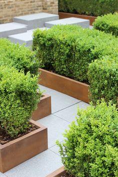 Gardens, Herbs, Landscape, Plants, Scenery, Outdoor Gardens, Herb, Plant, Corner Landscaping