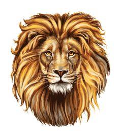 תוצאת תמונה עבור рисунок головы льва