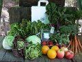 LocalHarvest Stores. online, search for local sources of natural meats, produce, honey, seeds, dairy and more