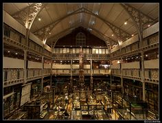 Pitt Rivers Museum, Oxford   Flickr - Photo Sharing!