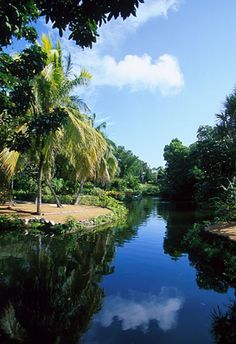 Garden of the Groves, Freeport, Grand Bahama Island, #Bahamas http://www.wanderplanet.com/bahamas-travel-vacation-hotels-and-resorts/