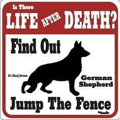 German Shepherd Life After Death Funny Warning Sign | eBay