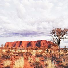 Uluru  It's truly an amazing sight to see!