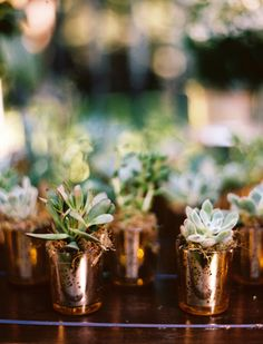 Copper Succulent Favors: Speaking of fancy wedding favors, these tiny succulents and their individual copper planters are a beautiful addition to your decor during the wedding and an even better wedding favor to send home with your guests afterward. Succulent Wedding Favors, Succulent Centerpieces, Wedding Flowers, Wedding Day, 2017 Wedding, Romantic Wedding Favours, Wedding Ceremony, Wedding Plants, Centrepieces