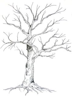Guestbook Tree Illustration by Anne Herbst, via Behance