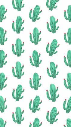 Wallpaper ~ Cacto