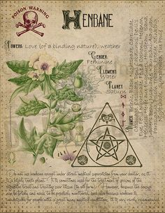 1367 Best Pagan & wiccan images in 2019 | Magick